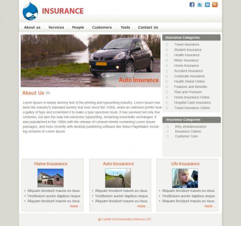 Insurance Theme